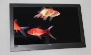Virtual gold fish