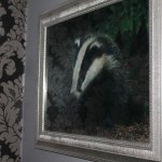 Badger Suite