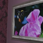 Thumbnail image of The Bumble Bee Suite
