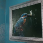 Thumbnail image of The kingfisher Suite