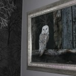 Thumbnail image of The Barn Owl Suite