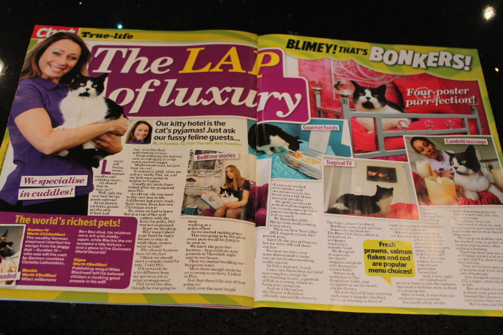 Pick Up A Chat Magazine Today And Read About Our